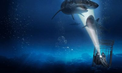 47 Meters Down 400x240 - Sequel to 47 METERS DOWN Gets Official Name, Cast Updates, & Release Date