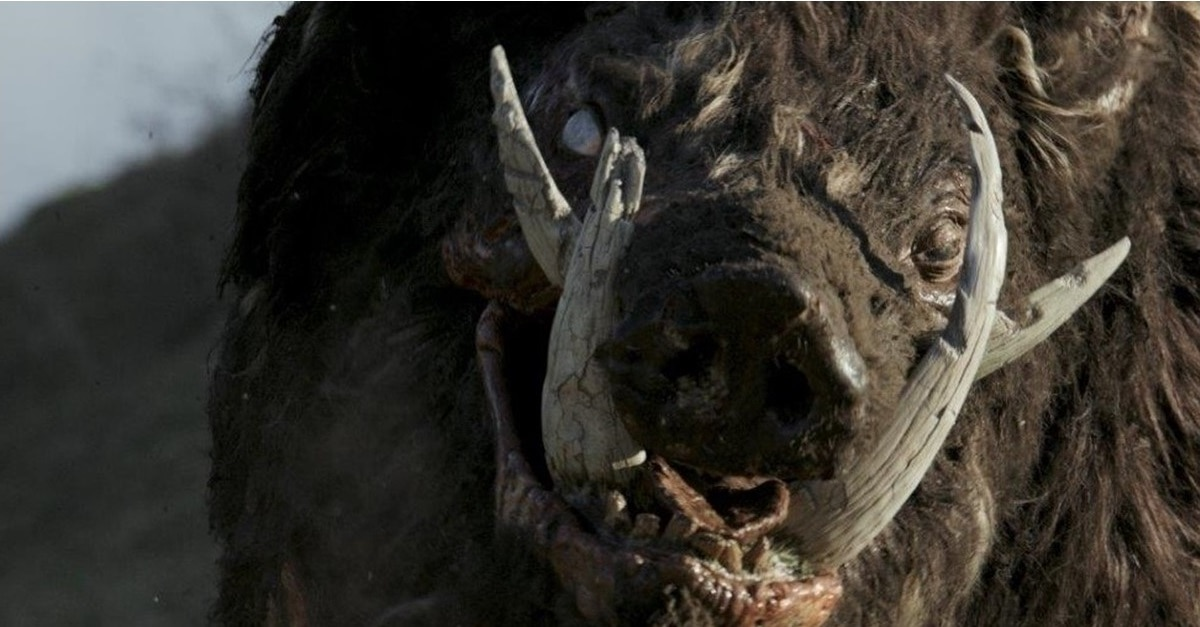 Boar Banner - Trailer: Bill Moseley Battles a Giant Pig in Ozsploitation Horror BOAR