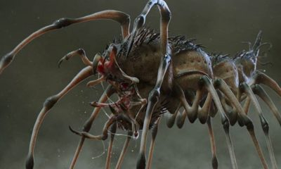 "Preda pede 400x240 - ""Preda-pede"" is the Most Terrifying Hybrid We Didn't See in Shane Black's THE PREDATOR"