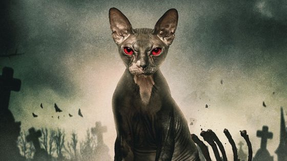 Pet Graveyard Banner 560x315 - Hairless Cat Heralds Horror in New Clip from PET GRAVEYARD