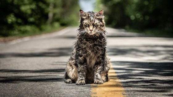 petsematarybanner 560x315 - PET SEMATARY Producer Says Prequel More Likely Than Sequel