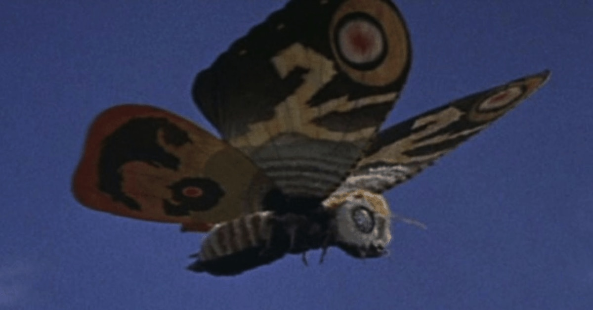 mothrabanner - MOTHRA Getting First North American Blu-ray Release in Gorgeous Steelbook