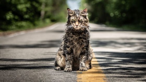 petsematarybanner2 560x315 - Video Interview: The Cast/Crew of PET SEMATARY on Honoring Stephen King's Work