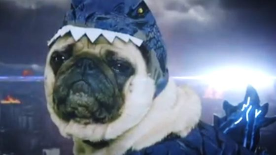Pugzilla Banner 560x315 - Meet PUGZILLA: KING OF THE DOGSTERS in Cute AF GODZILLA Parody