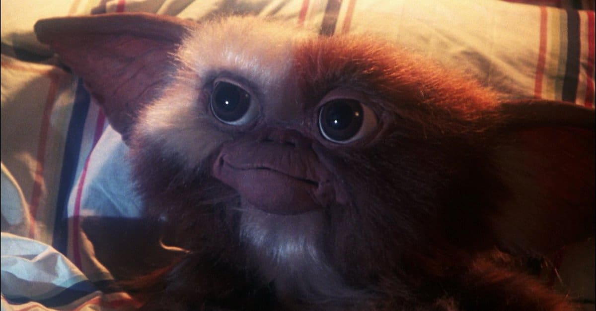 gremlinsbanner - Don't Forget The Three Rules! GREMLINS Getting 4K Treatment This October