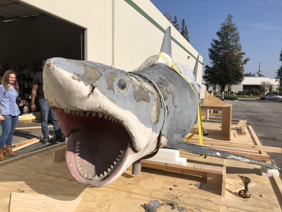 jawsrestoration 1 - Bruce, The Shark From JAWS, Is Being Restored To His Former Glory