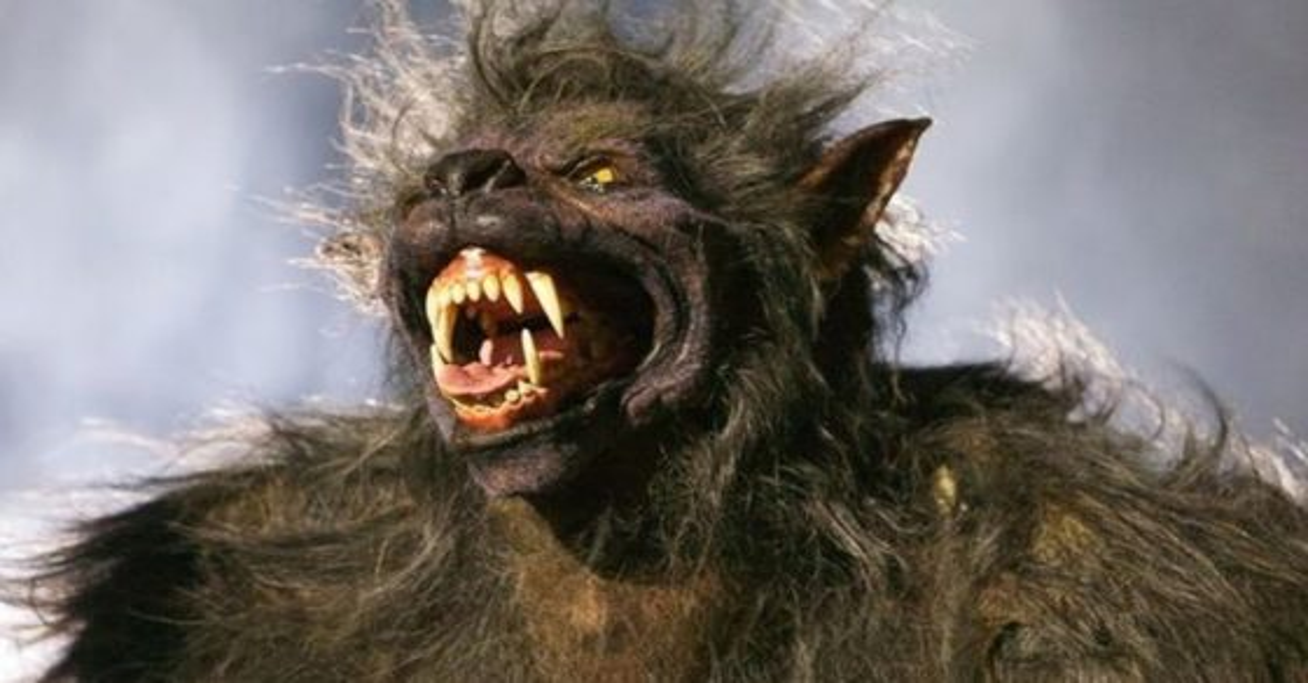 werewolfbannerbloodmoon 560x315 - FrightFest's Yearly Guide Will Focus This Year On Werewolf Movies!