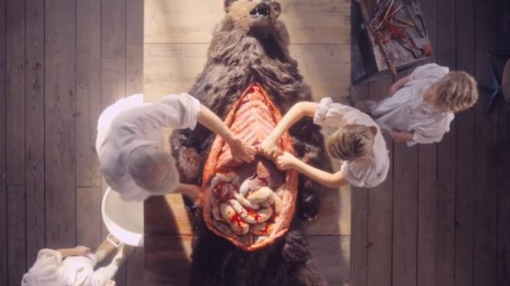 Misdommar Banner 560x315 - Ari Aster Reveals Significance of the Bear in MIDSOMMAR + What We Can Expect in the Director's Cut
