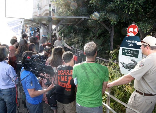 crawl 7 - Feeding Time! Check Out Images from Press Event for CRAWL at the LA Zoo with Real Alligators