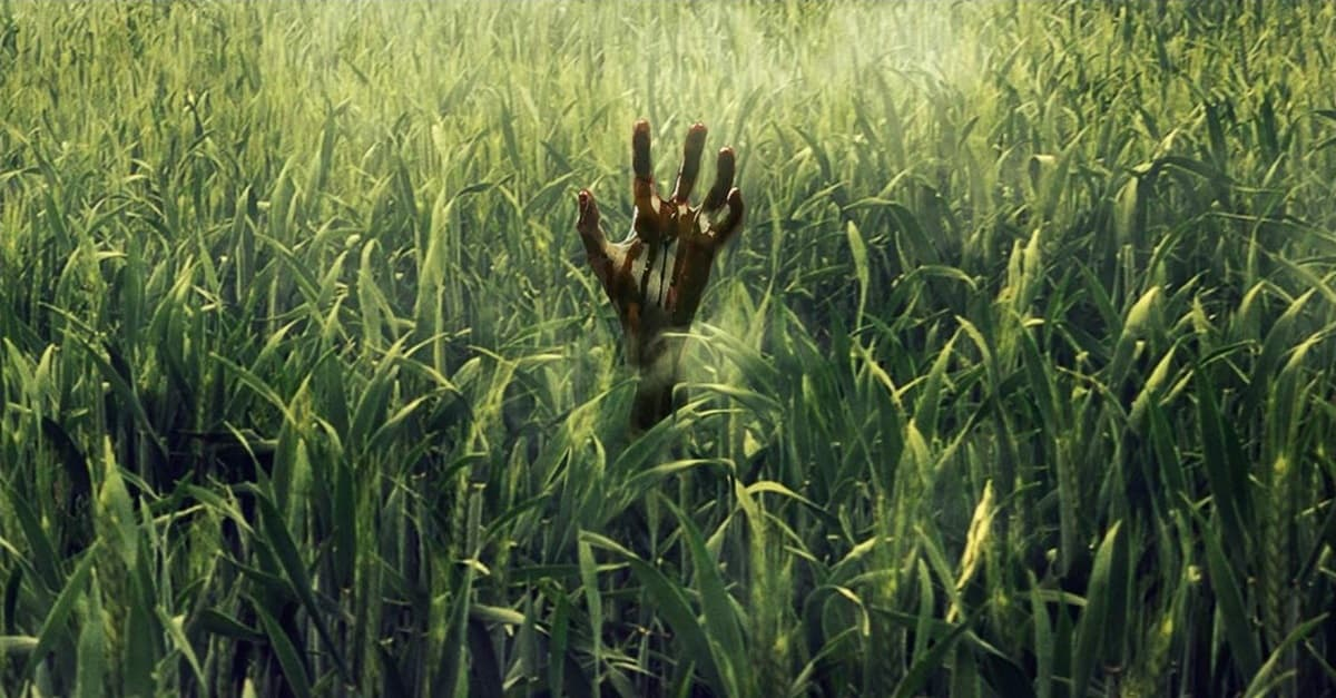 in the tall grass banner - Trailer: Stephen King & Joe Hill's IN THE TALL GRASS Arrives on Netflix October 4th