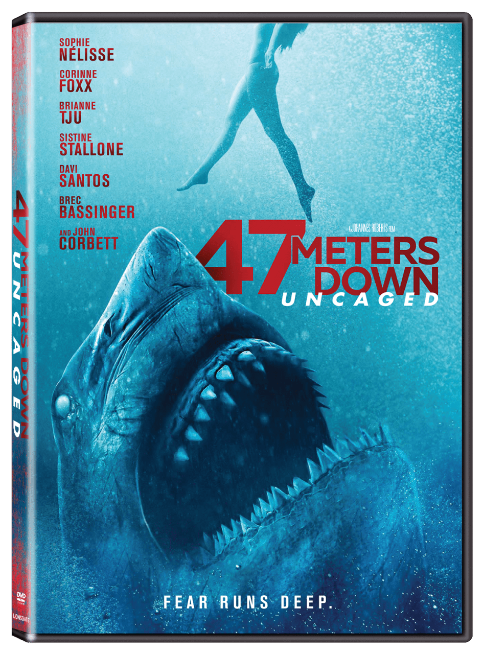 47 meters down uncaged - Exclusive Video: Cast of 47 METERS DOWN: UNCAGED Discuss Perils of Filming Underwater