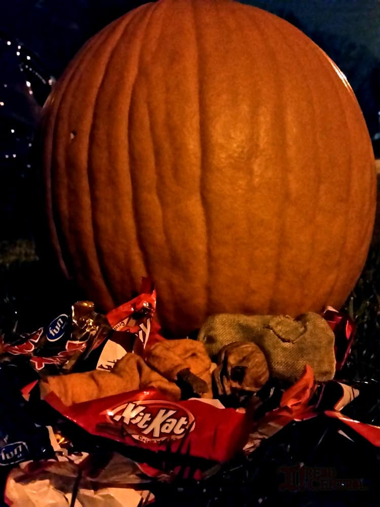 NECA Trick R Treat Sam Clothed Action Figure 010 - TRICK 'R TREAT's Sam Has a Busy Night!