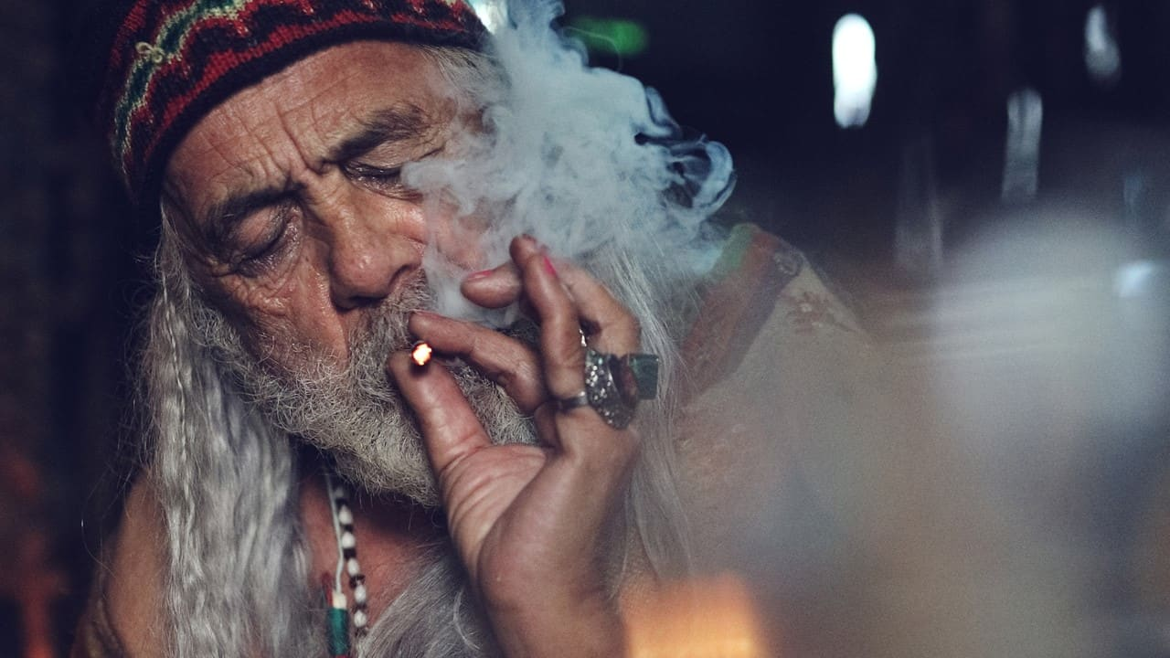 Color Out of Space Chong - Exclusive Interview: Tommy Chong Talks COLOR OUT OF SPACE & Cannabis, Man