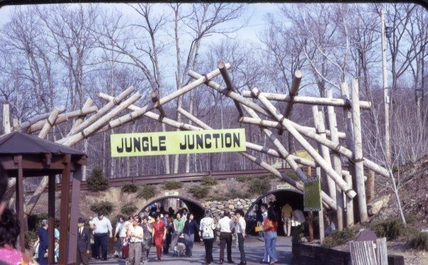 jungle habitat 5 - Did Jungle Habitat Let Loose Wild Animals in New Jersey's Forests?