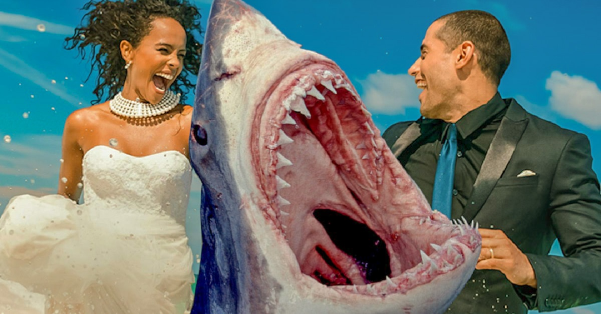 shark wedding edited - SOMETHING IN THE WATER Should Just Be Called SHARK WEDDING