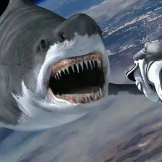 Sharknado Banner 550x550 - Home