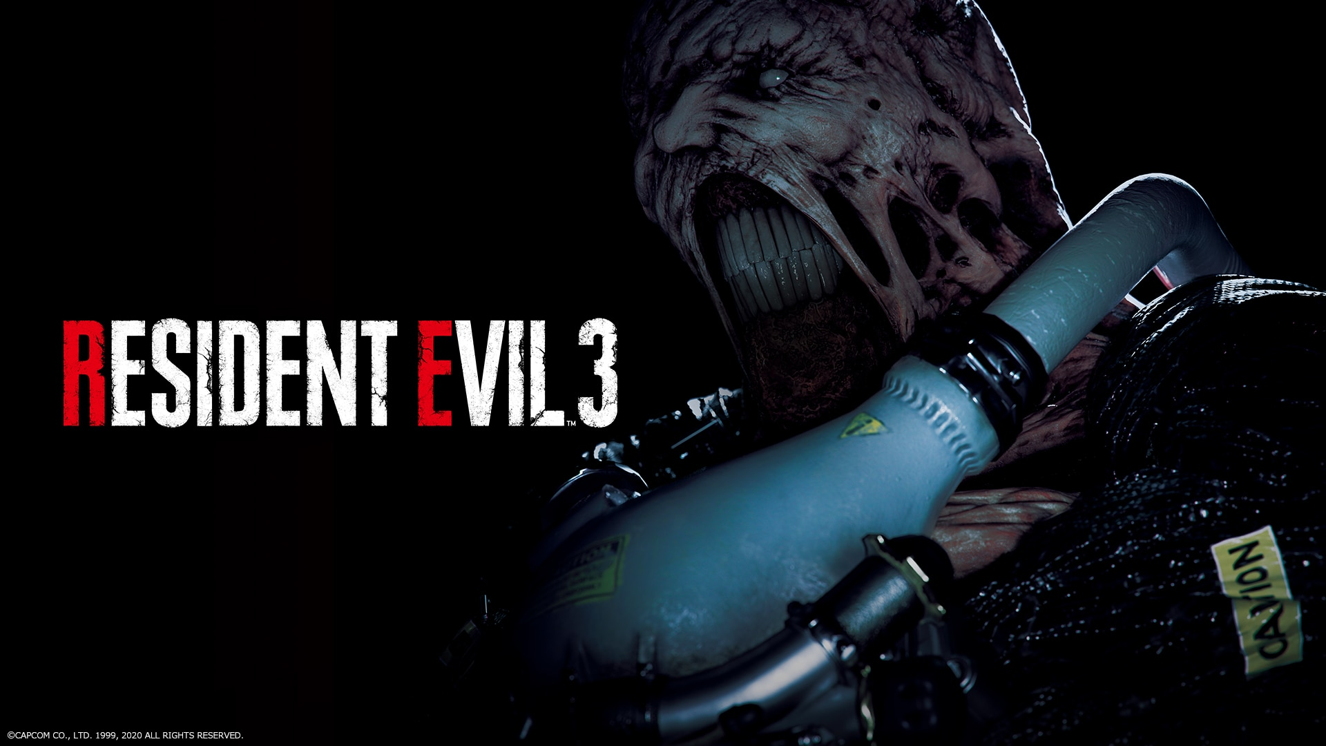re3z pc global - Capcom Asking Fans If They Want More Resident Evil