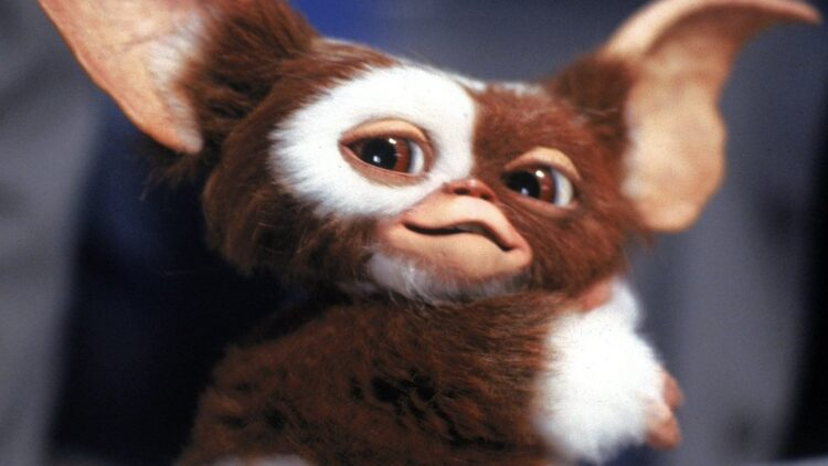 gizmo gremlins 750x422 - Original Star Teases GREMLINS 3 Is Still a Strong Possibility