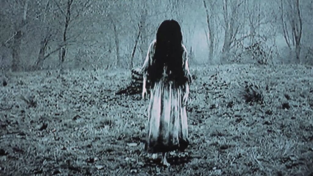 The Ring Banner 1024x577 - 7 Scary Supernatural Netflix Movies To Watch With THE CONJURING 3