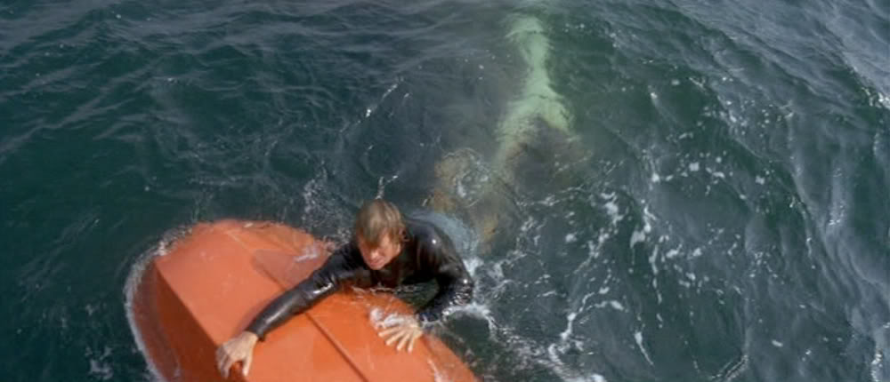 Jaws 5 - 32 Must-See Horror Movies You Need to Stream on HBO Max Right Now