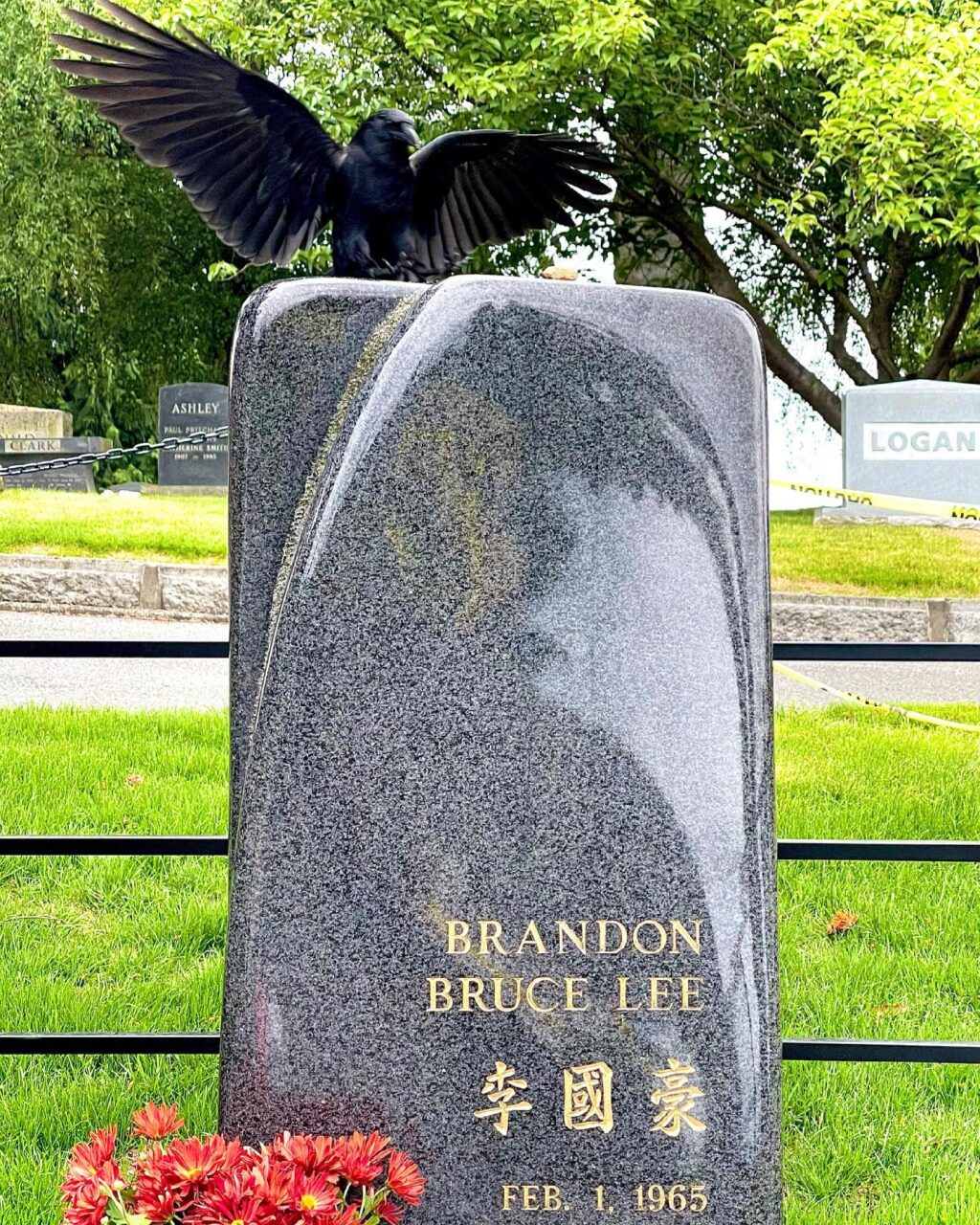 Brandon Lee Grave 1024x1280 - Photographer Takes the PERFECT Photo at the Grave of Brandon Lee