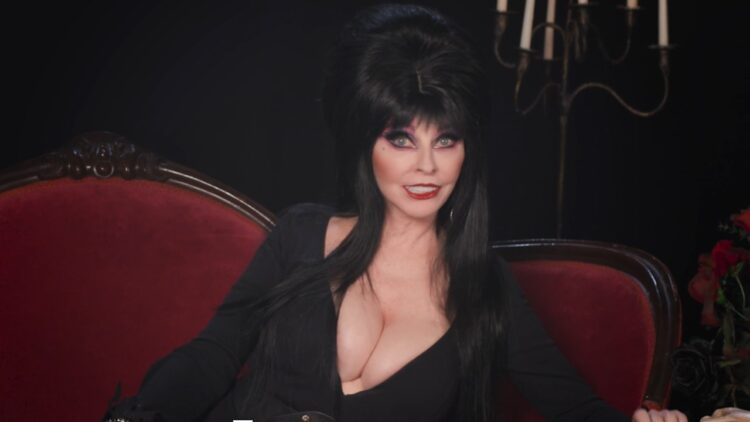 Elvira Banner 750x422 - Elvira Now Set to Host 40th Anniversary Special on Shudder