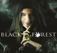Stoney Sales Trailer for Black Forest: Hansel and Gretel & The 420 Witch