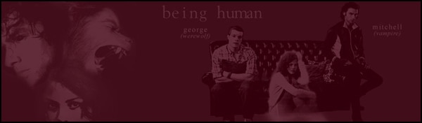 BBC America's Being Human at Comic-Con