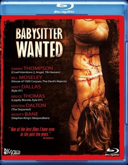 Babysitter Wanted on Blu-ray and DVD (click for larger image)
