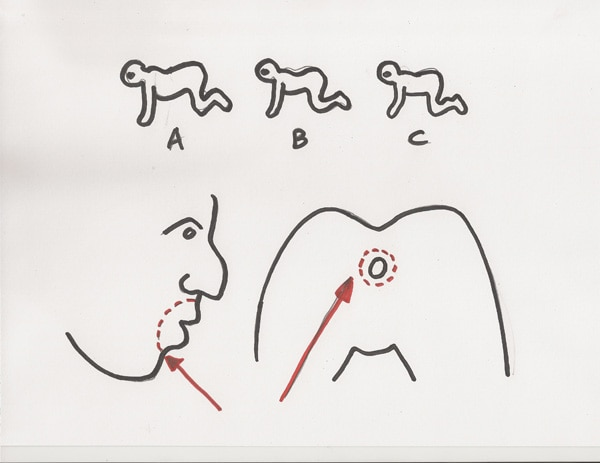 The Human Centipede (First Sequence) concept sketch