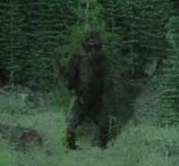 Get Teased by a Dead Bigfoot
