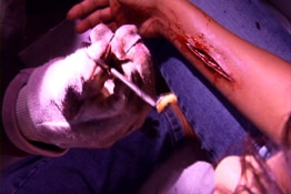 Experiment in Torture DVD (click for larger image)
