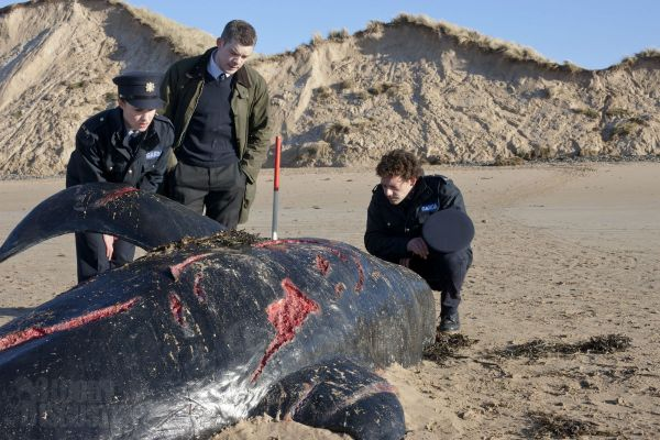 Sundance 2012: A Whale of a New Still From Grabbers