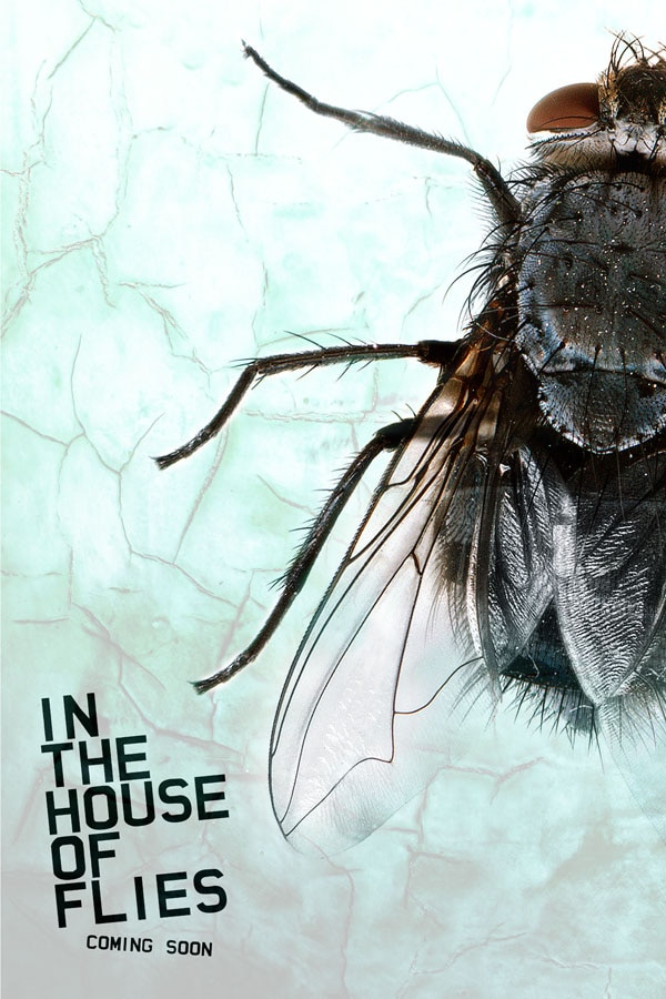 Early Word and Teaser Art for In the House of Flies