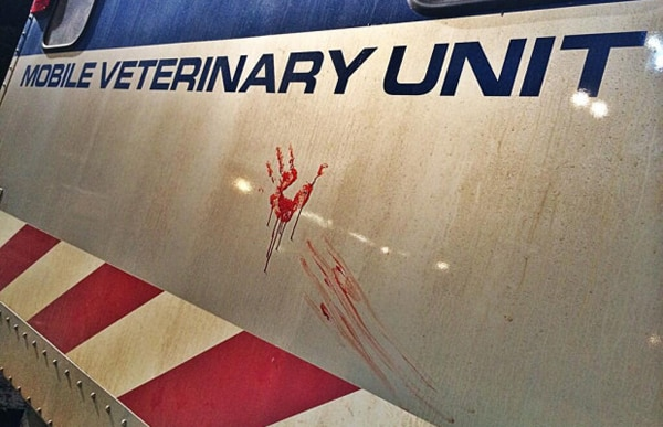 jurassic world bloody - More Jurassic World Casting! Find Out Who's Next on the Menu!