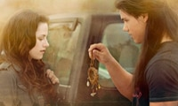 Three New Wallpapers from Twilight Saga: New Moon