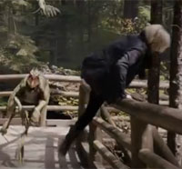 A Very Fast, Very Scary Preview of Primeval: New World Episode 1.07 - Babes in the Woods