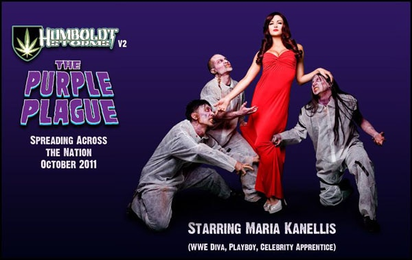 Former WWE Diva Maria Kanellis Grapples With the Purple Plague