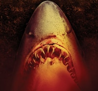 Sand Sharks (UK DVD)