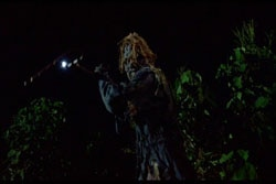 Scarecrows DVD (click for larger image)