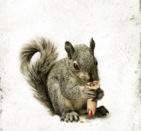 Timur Bekmambetov to Unleash Flesh-Eating Squirrels at Cannes; First Word and Sales Art!