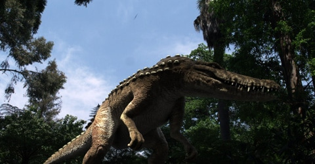 Attack of the Dinocroc vs. Supergator Stills