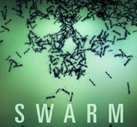 A New Swarm is Headed Our Way