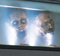Anchor Bay Unboxes The Walking Dead Season 3 Limited Edition Fish Tank Box Set