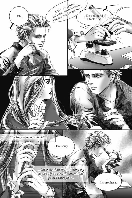See the Twilight: The Graphic Novel Cover Art and a Story Panel